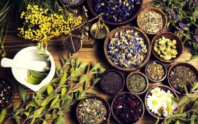 7 Toko Herbal Online Indonesia Yang Wajib Anda Ketahui!